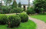 Как выполнить ландшафтный дизайн загородного дома?