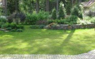 Как создать дизайн двора частного дома?