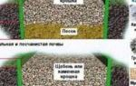 Как установить бордюрную ленту для грядок?