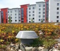 Нормативы придомовой территории многоквартирного дома в 2020 году сколько метров по жилищному комплексу она считается, благоустройство и уборка