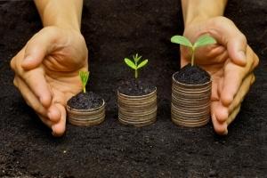 Земельный участок под ИЖС в 2020 году как купить под строительство дома и сколько стоит