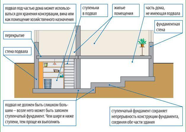 Как сделать и обустроить подвал в частном жилом доме